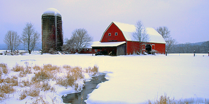 Working in Cold Weather: 4 Safety Tips for Farmers and Ranchers header image