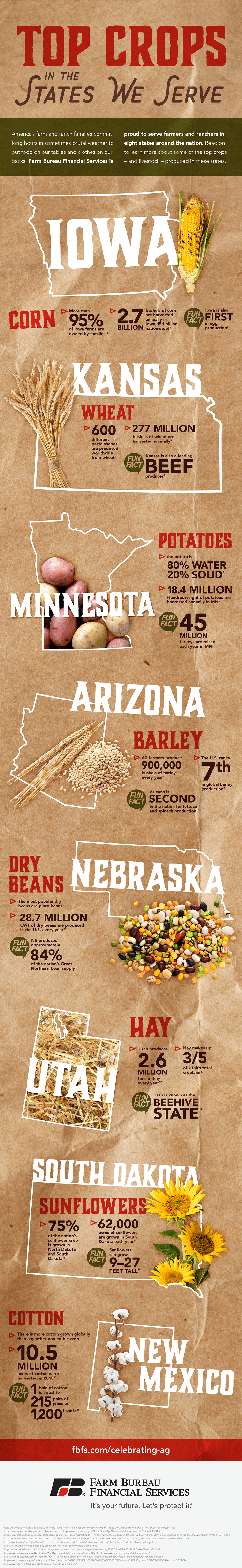 Top Crops in the States We Serve