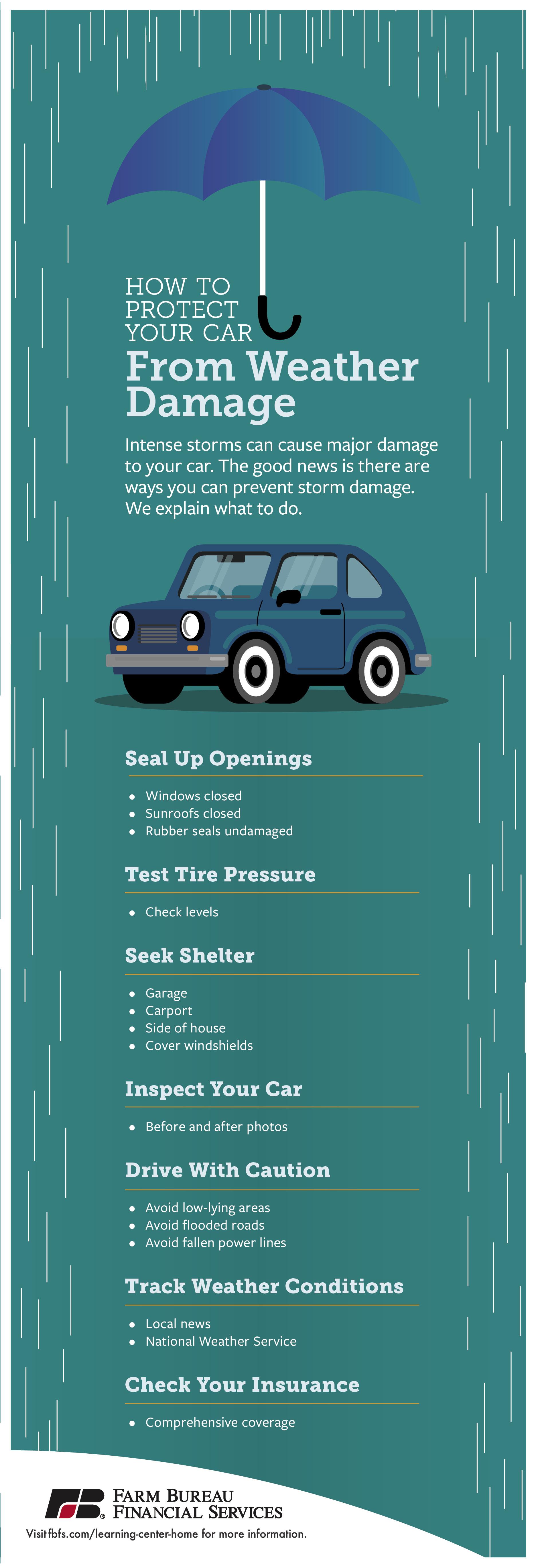 FBFS_CarWeatherDamage_Infographic