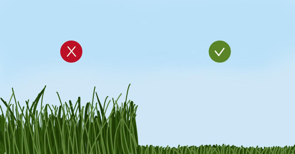 Cut Your Grass