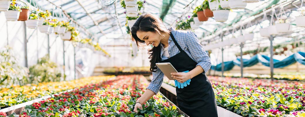 5 Reasons to Buy Locally Grown Flowers