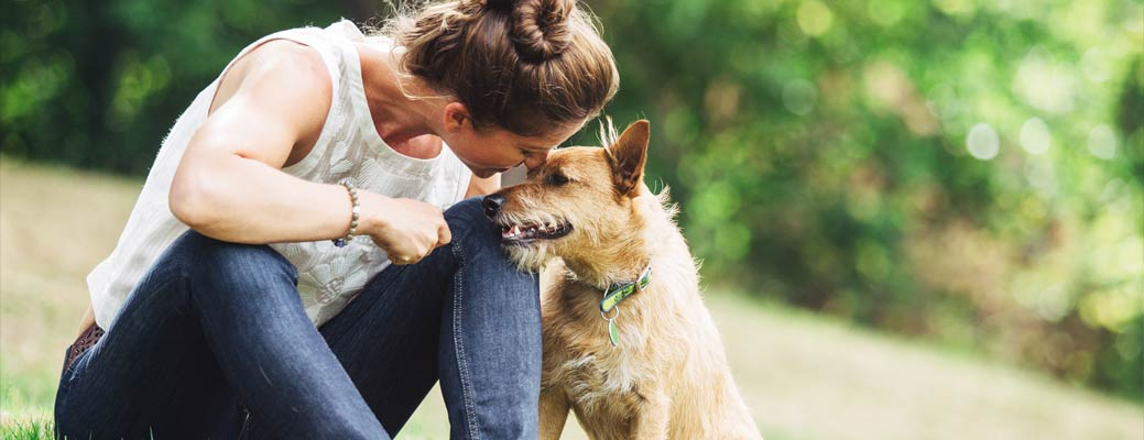 How to Choose the Best Sitter for Your Pet