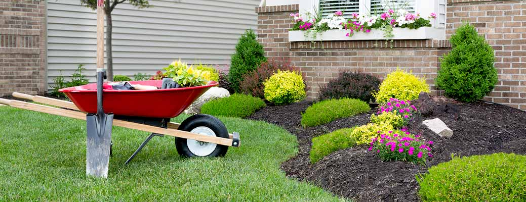 How to Boost Curb Appeal on a Budget: 8 Useful Tips