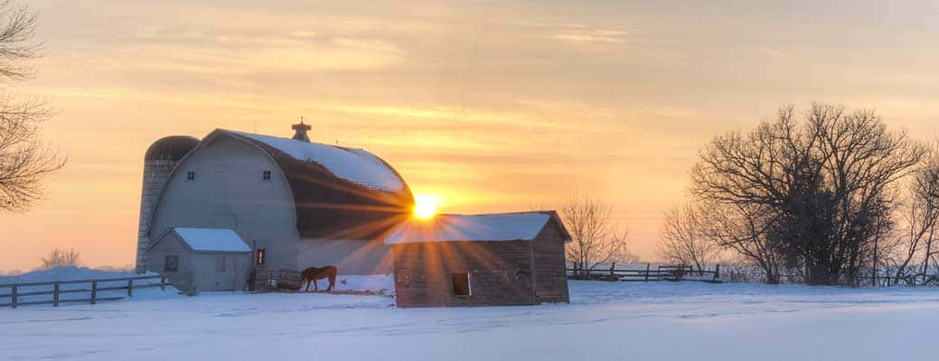 How to Prepare for Winter on the Farm