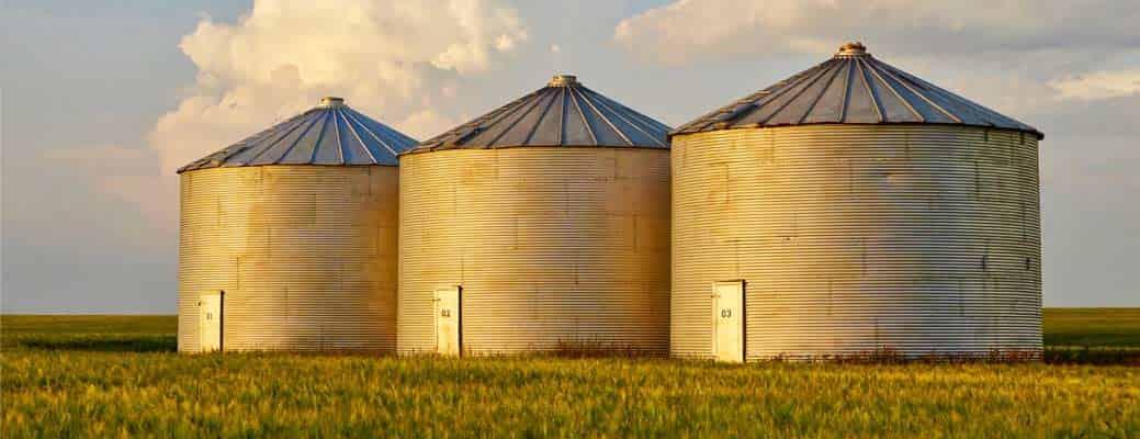 Grain Bin Management Tips for Summer