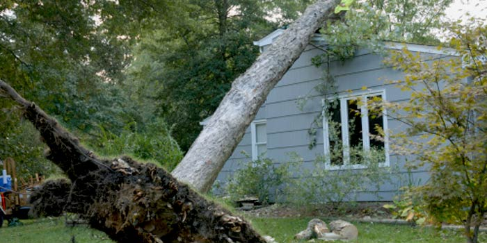 Innovations in High-Efficiency, Storm Resistant Homes