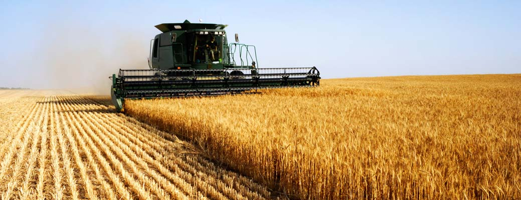 9 Tips for Keeping Yourself Healthy During Harvest Season