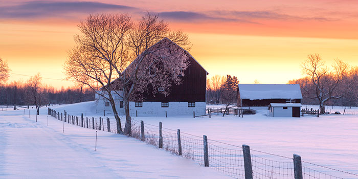 How Farmers Can Make the Most of the Winter Off-Season