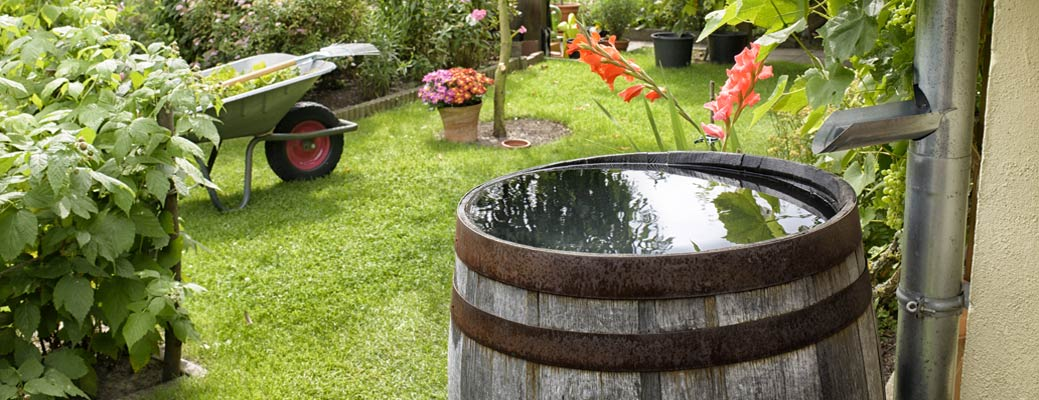 How to Install a Rain Barrel and Soaker System