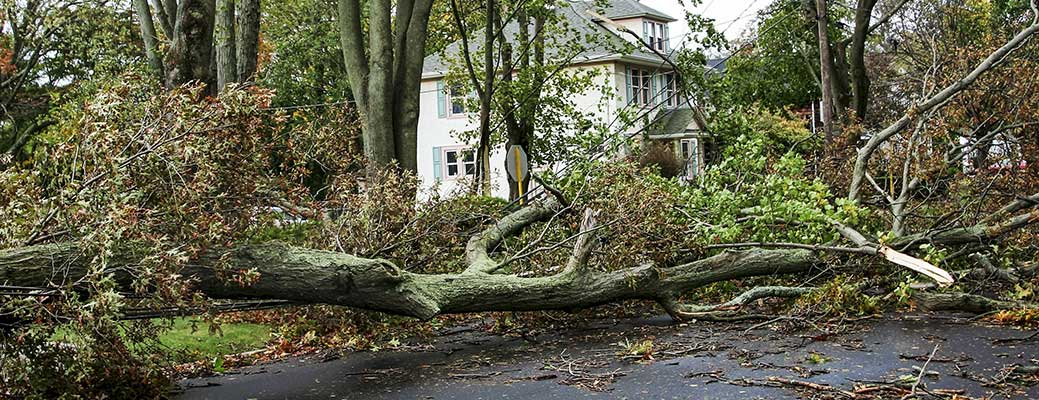 Severe Weather Terms You Need to Know