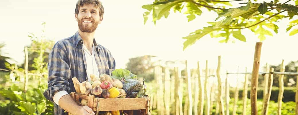 Take Advantage of Fall to Revamp Your Urban Garden