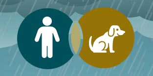 10 Ways to Make Your Kids and Pets Feel Safe During a Storm