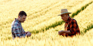 Why We're Thankful for Farmers and Ranchers