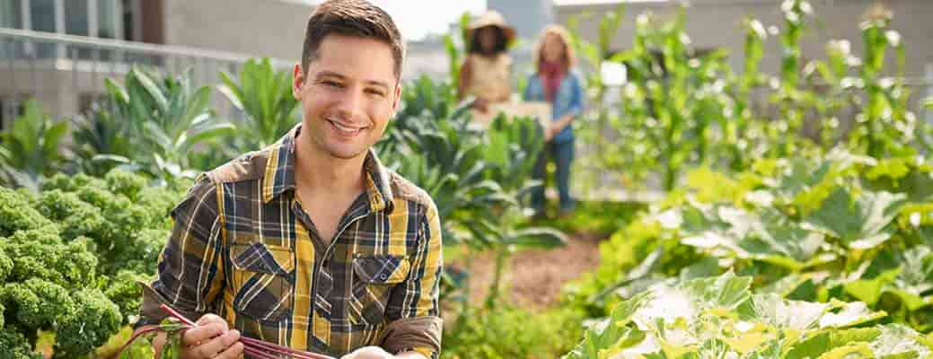 Thinking of Starting a CSA? Start Planning Now header image