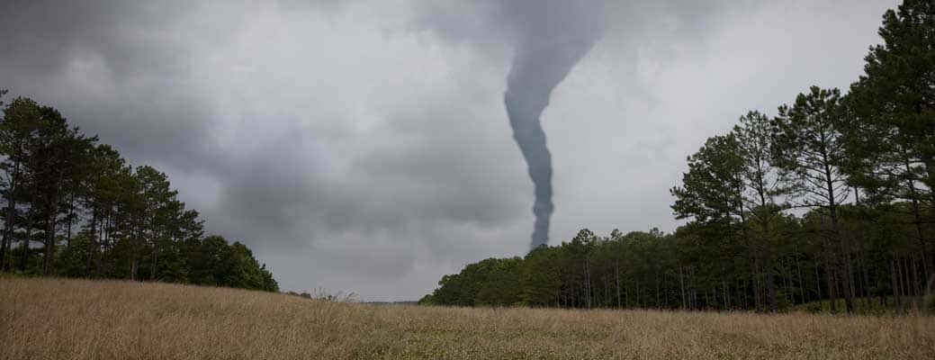 What You Need to Know in the Event of a Tornado