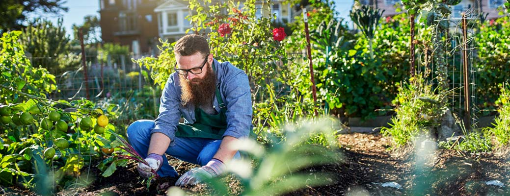 5 Tips for Small-Space Gardening