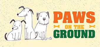 PAWS ON THE GROUND LC THUMBNAIL 339 x 159
