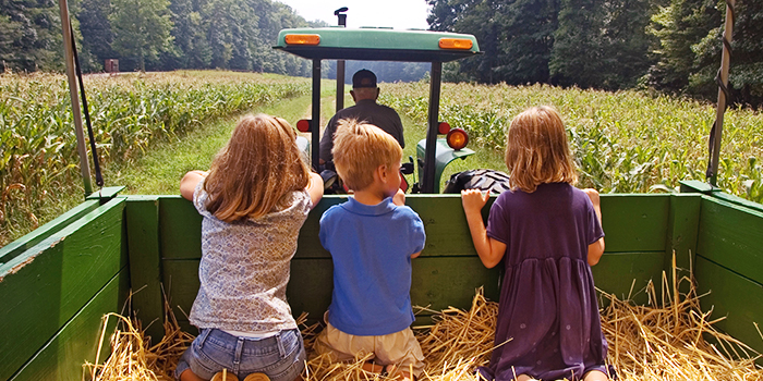 Insurance to Protect Farm Visitors - and the Farm  header image