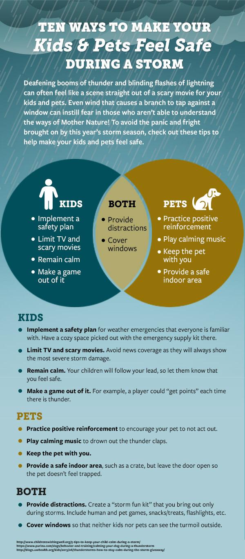 Infographic_KidsPetsStorms_v1