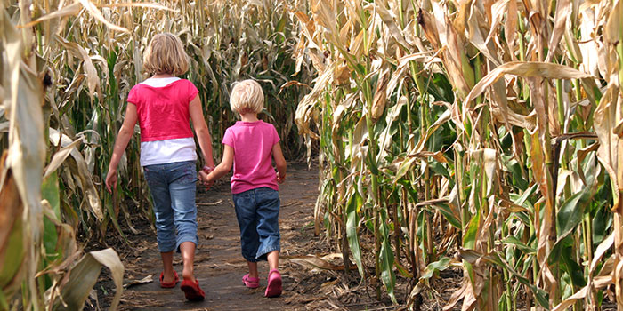 You Can't Take the Farm Out of the Kid header image